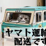 武田薬品のブドウ糖の注文方法が変わります(10月より)