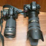 幼稚園の運動会のカメラ選び。満足できる1枚を求めて