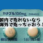 共和薬品工業株式会社(アメル)の販売中止品など